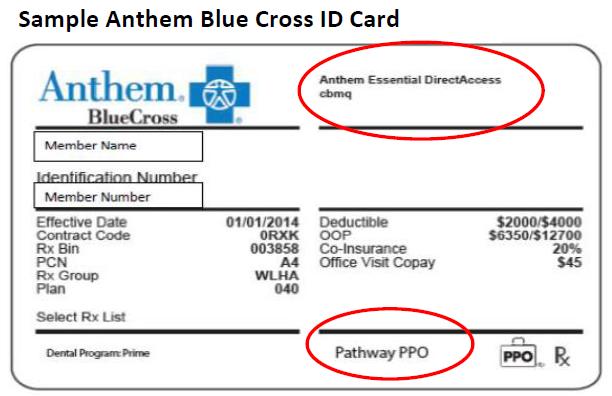 Anthem Blue Cross Sample Insurance Card | aesthetic caption